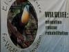 El Socoro Center for Wildlife Conservation